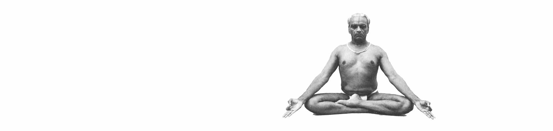Iyengar yoga Instruction in Lytham St Annes
